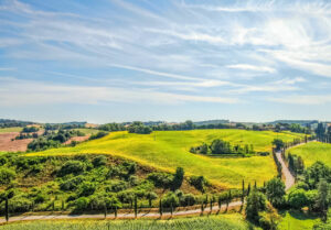 Top Beautiful Vineyards and Wineries to visit in Tuscany
